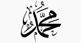 مولد خير الخلق محمد صلى الله عليه وسلم